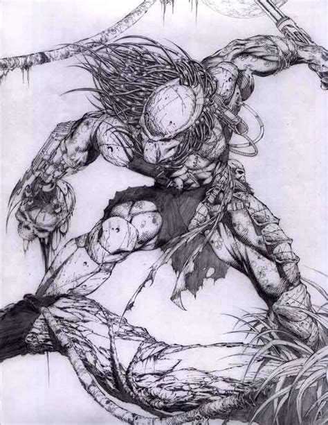 Sketches V by Predator Auction Your Comics On Http Www Comicbazaar Co