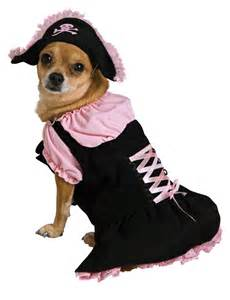 pirate costume for dogs pirate pet costume for my