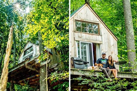 tiny forest home built in 6 weeks for 4 000