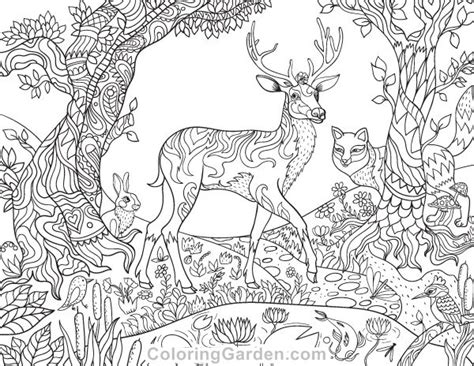 forest animals coloring pages for adults 2852 best adult coloring therapy free inexpensive