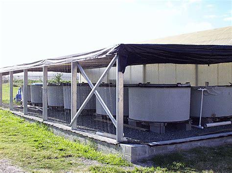 vasche esterne vasche esterne i servizi che completano nel lido estivo