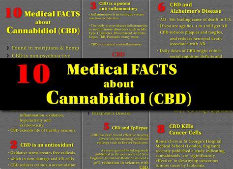 10 facts about new year infographic lemon 10 cbd marijuana facts infographic cbd