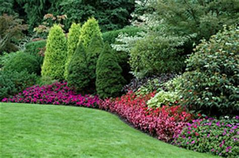 common landscaping plants why design is important growing a greener world 174