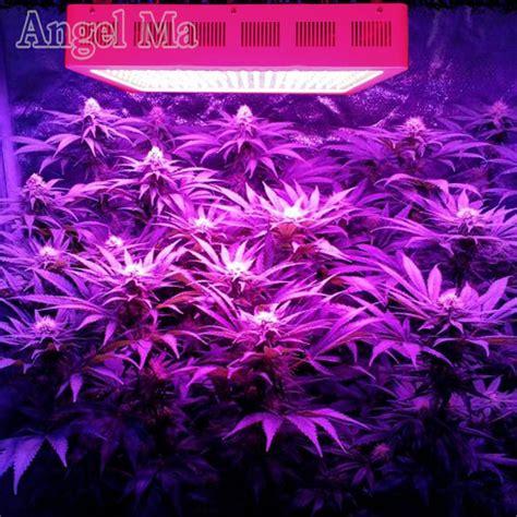 Plants That Grow In Fluorescent Light plants that grow in fluorescent light the best lights for