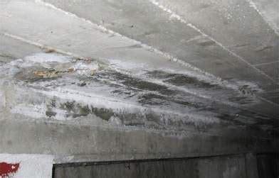 come eliminare la muffa dalle pareti interne il problema dell umidit 224 in casa i proprietari di casa