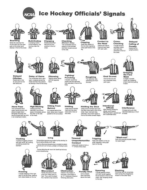 printable rules for volleyball penalty cheat sheet jpg 2550 215 3300 reference code