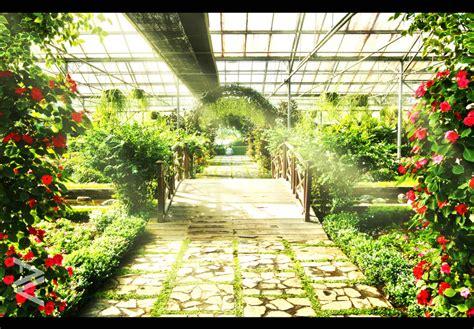 wallpaper bunga di taman wallpaper pemandangan taman bunga www imgkid com the