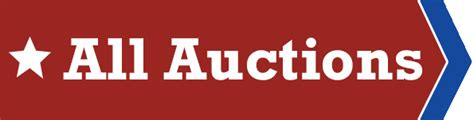 bid auction websites k bid inc auctions shop for deals and bid