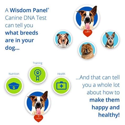 breed test kit mars veterinary wisdom panel 3 0 breed identification dna test kit smart dogs shop