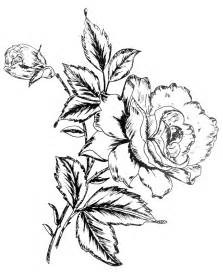 images of flower designs cliparts co