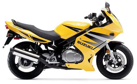 2003 Suzuki Gs500 Suzuki Gs500f 2003 2004 Autoevolution