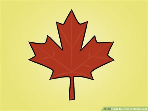 Drawing Leaves by How To Draw A Maple Leaf 12 Steps With Pictures Wikihow