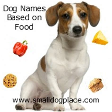 food names for dogs names based on food and pet names