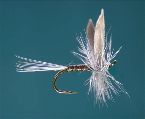 blue quill pattern trout flies