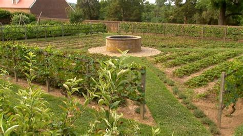 how to layout a vegetable garden how to layout a vegetable garden p allen smith classics