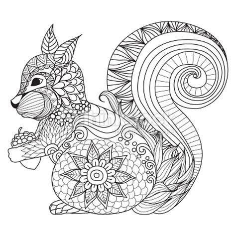 mandala coloring book in dubai squirrel coloring vector thinkstock