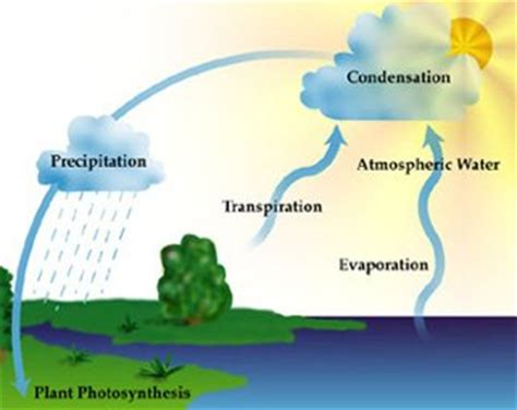 diagram to show evaporation atmosphere climate environment information programme