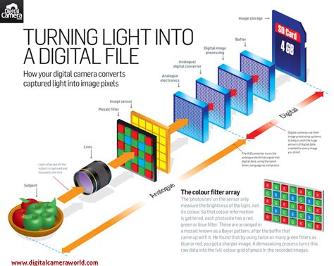 how do light cameras work ikon photographs how digital cameras actually work