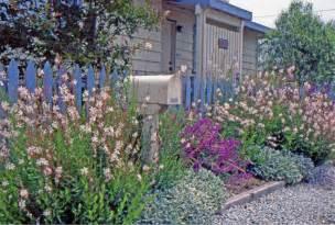 a coastal cottage garden van de voorde elemental design