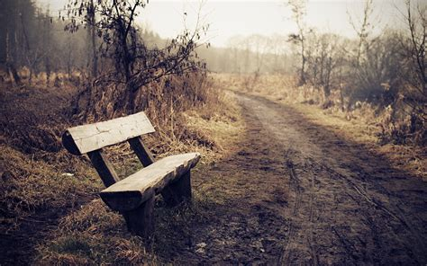 lonely bench download the lonely bench wallpaper lonely bench iphone
