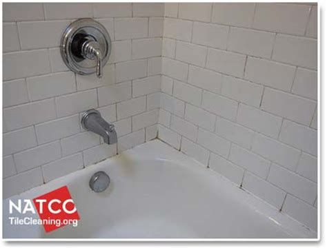 Remove Mildew From Shower Grout by How To Remove Mold In A Tile Shower