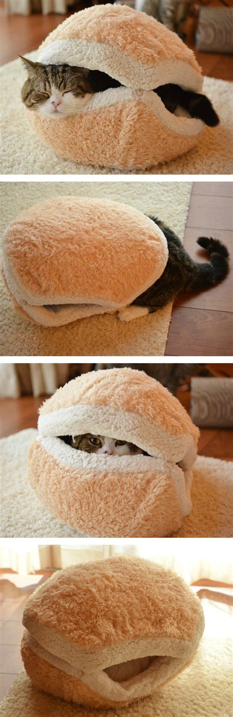 Cat Macaron Bed by 13 Things You Probably Didn T Even They Exist