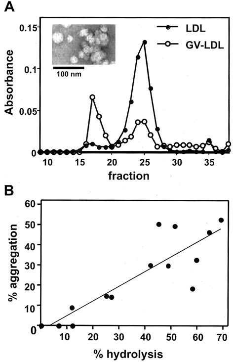 pattern formation particle aggregation group v spla2 hydrolysis of low density lipoprotein