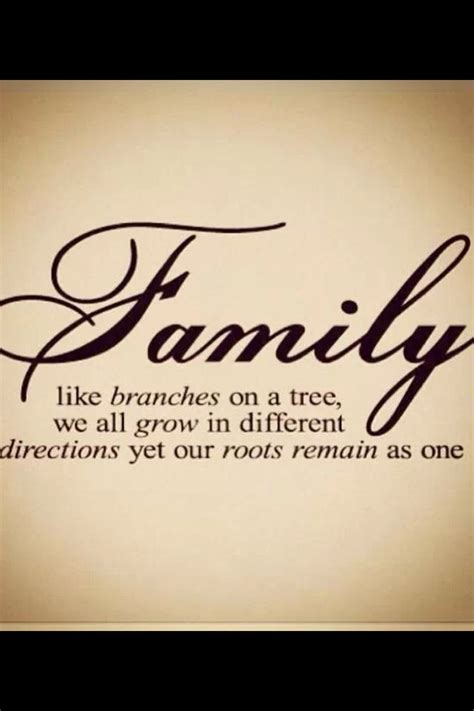 family quotes sayings images page 10 family quotes pinterest