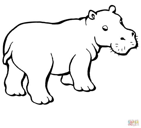baby hippo coloring online super coloring