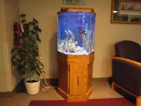 Fish Aquarium Gallery of Aquatic Designs   Aquarium Maintenance