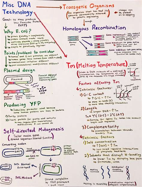 biography definition in biology 1000 images about molecular biology on pinterest signal