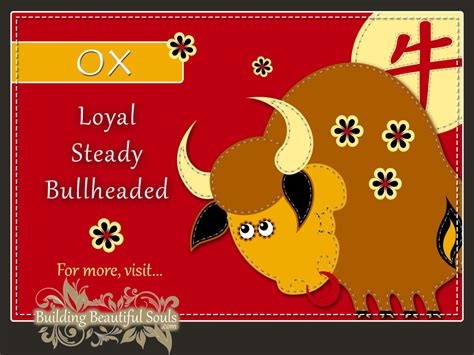 new year ox year zodiac ox year of the ox horoscopes