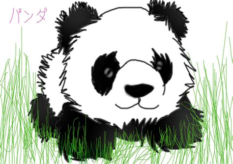 panda chibi by anime girl12 on deviantart
