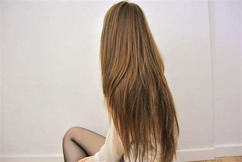 alimenti capelli alimenti per capelli sani e forti 28 images 5 alimenti