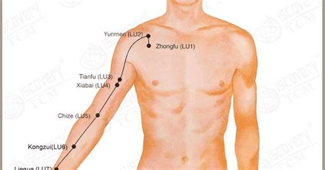 Acupressure Points For Liver Detox by The Lung Meridian Http Tcmdiscovery Acupuncture