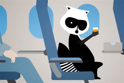 porter airlines bucks  trend   animated mascot