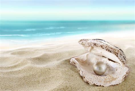 Gelang Mutiara Shell Mutiara Air Tawar Lombok10 shell with a pearl jual mutiara lombok murah