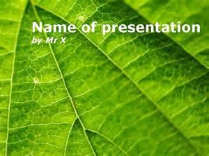 nature fern leaf illustration powerpoint template