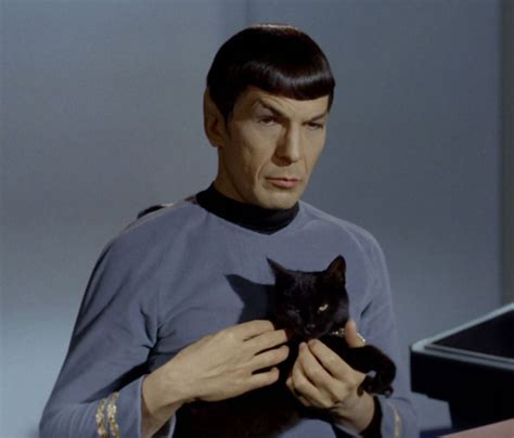 Spock Search Spock Quotes 10 Best Leonard Nimoy Sayings As Trek Vulcan