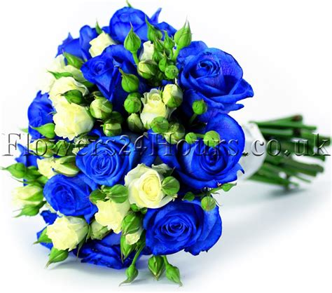 Blue Tipped Flower blue tipped roses for delivery