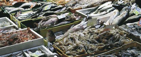 pesce azzurro come cucinarlo pesce povero 5 ricette per cucinarlo agrodolce
