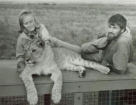 film elsa the lioness bill travers