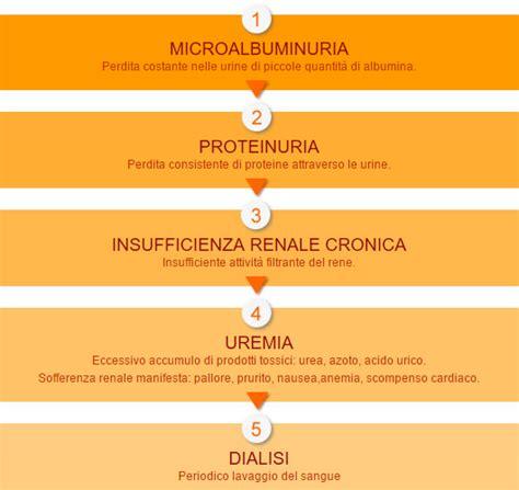 acido urico alimenti vietati acido urico sangue valori acido urico alto fitoterapia