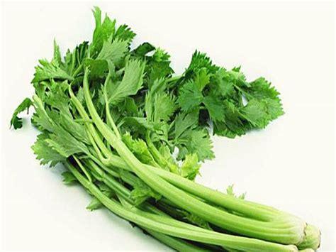 obat asam urat  apotik pantangan tanaman obat herbal