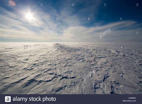 tundra landscape pets world