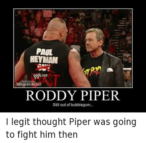 Roddy Piper Meme - roddy piper meme 28 images 25 best memes about roddy