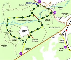 new forest car parks map new forest cycle ride ashurst busketts lawn inclosure