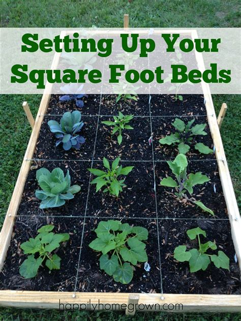 How To Set Up A Garden Bed Setting Up Your Square Foot Beds Happily Homegrown