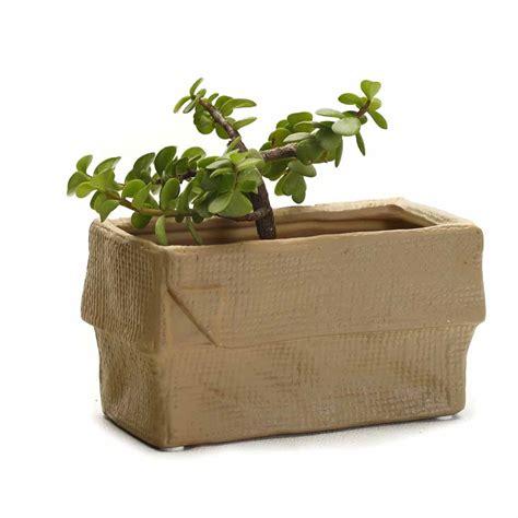 crumpled look brown rectangle ceramic planter pot india