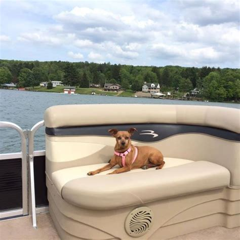 rushford lake boat rentals 25 best images about rushford on pinterest lakes early